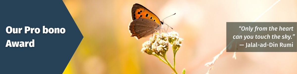 Our pro bono award; Image of a butterfly on a flower; Quote: Only from the heart can you touch the sky - Jalal-ad-Din Rumi